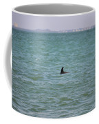 Dolphin Makes An Appearance Coffee Mug