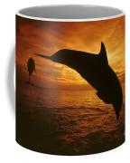 Dolphins And Sunset Coffee Mug