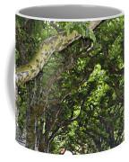 Dome Of Trees Coffee Mug