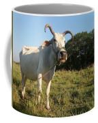 Domestic Animal 02 Coffee Mug