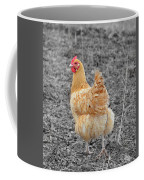 Domestic Feathered Beauty Coffee Mug