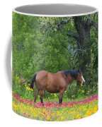 Domestic Horse In Field Of Wildflowers Coffee Mug