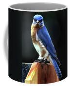 Dominator Coffee Mug