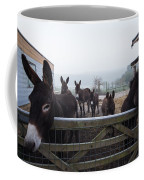 Donkeys Coffee Mug