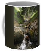 Donner Creek Coffee Mug