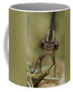 Don't Come Any Closer Coffee Mug