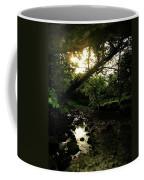 Doonally Co. Sligo Ireland. Coffee Mug