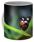 Doris Longwing Butterfly 2017 Coffee Mug