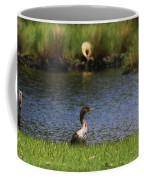 Double-crested Cormorant 3 Coffee Mug