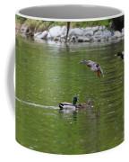 Double Duck Landing Coffee Mug