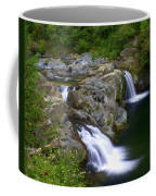 Double Falls Coffee Mug