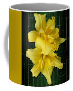 Double Jackpot Daylilies Coffee Mug