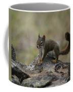 Douglas' Squirrel On The Rocks Coffee Mug