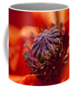 Douze Coffee Mug