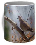 Dove On A Branch Coffee Mug