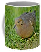 Dove With Hdr Coffee Mug