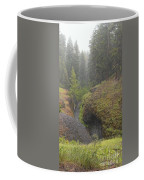 Down Pour At Boulder Cave Coffee Mug