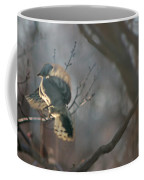 Downey Woodpecker Coffee Mug