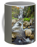 Downstream From Chittenango Falls Coffee Mug