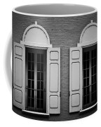 Downtown Windows Roanoke Virginia Coffee Mug