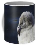 Downy - Baby Flamingo Coffee Mug