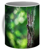 Downy Woodpecker In The Wild Coffee Mug