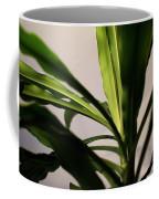 Dracaena Fragrans Coffee Mug