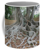 Dragonfeet Coffee Mug