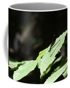 Dragonfly 3 Coffee Mug