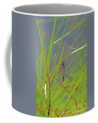 Dragonfly 4 Coffee Mug