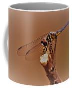 Dragonfly Beauty Coffee Mug