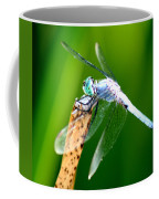 Dragonfly Blue Coffee Mug