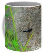 Dragonfly A Coffee Mug