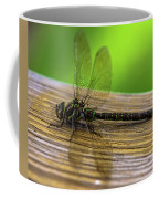 Dragonfly Colors Coffee Mug