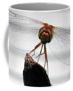 Dragonfly Face Coffee Mug