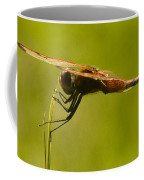 Dragonfly Holding On Tight Coffee Mug