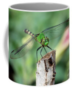 Dragonfly In The Flower Garden Coffee Mug