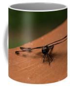 Dragonfly On A Porch Railing Coffee Mug