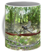 Dragonfly On Barbed Wire Coffee Mug