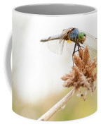 Dragonfly Perch Coffee Mug