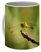 Dragonfly Perched Coffee Mug