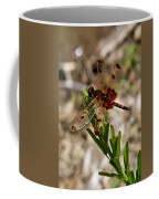 Dragonfly Resting On The Green Coffee Mug