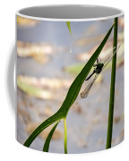 Dragonfly Resting Upside Down Coffee Mug