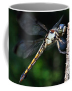 Dragonfly Revisited Coffee Mug