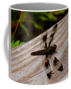 Dragonfly Spots Coffee Mug