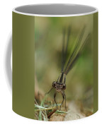 Dragonfly Up Close Coffee Mug