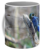 Dragonfly Wing Detail Coffee Mug