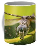 Dragonfly Wiping Its Eyes Coffee Mug