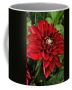 Dramatic Dahlia Coffee Mug