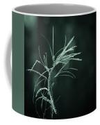 Dream Catcher Coffee Mug by Mary Amerman
